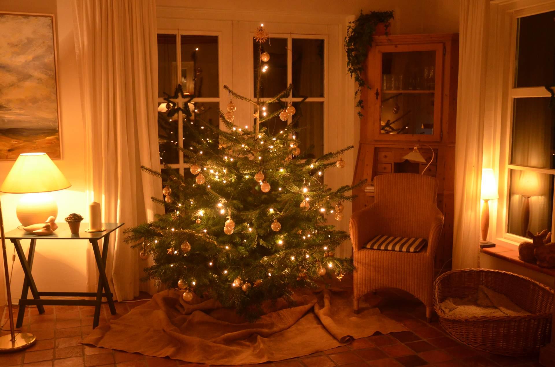 Luxus ferienhaus nordsee pool sauna kamin reetdach - Weihnachten wohnzimmer ...